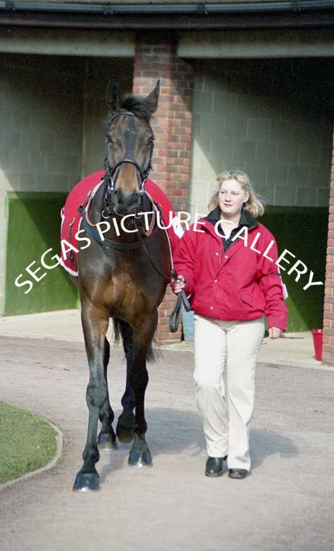 Racehorse Thisthatandtother with Jockey Ruby Walsh